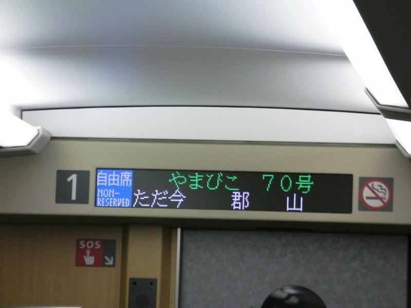 13z.jpg