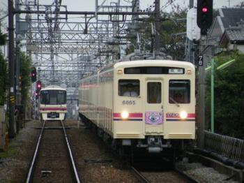 Tama Zoo Train 02