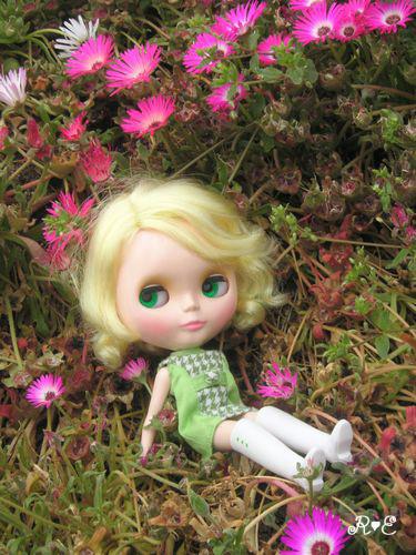 flog_flower.jpg