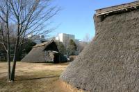 弥生時代の人の住む村1