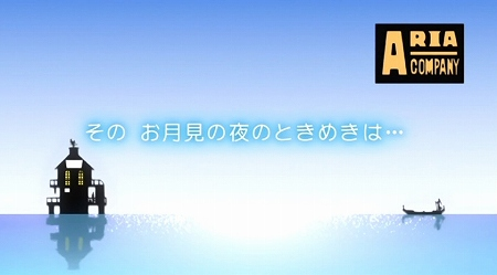 aria10wa1.jpg