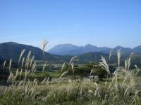 ススキと大山
