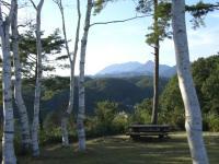白樺と大山