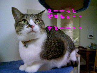 PA0_0100-091201.jpg