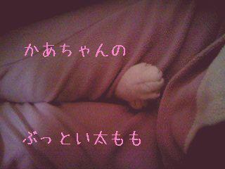 PA0_0140-100217-1.jpg