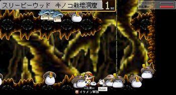 キノコ栽培洞窟