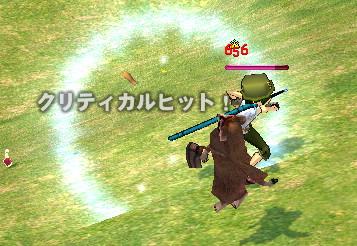 タヌキさん(´・ω・`)