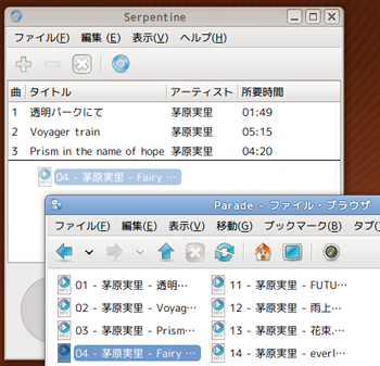 Ubuntu Serpentine ライティングソフト 曲リスト