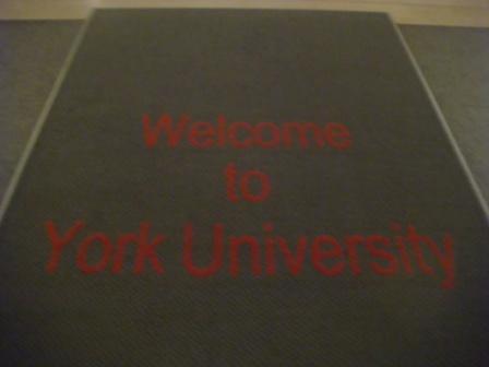 york6.jpg