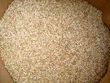 烏骨鶏のエサ「玄米」