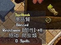 060605book
