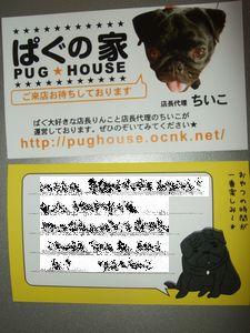 DSCF7525ちいこちゃん