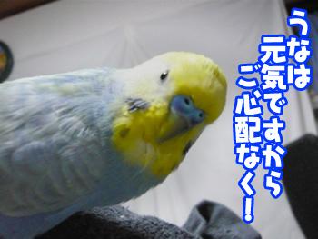 una0410_01.jpg