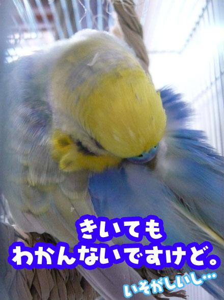 una0912_03.jpg