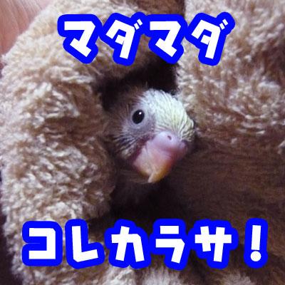 una1005_04.jpg