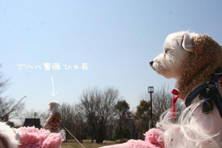 3_11_3528.jpg