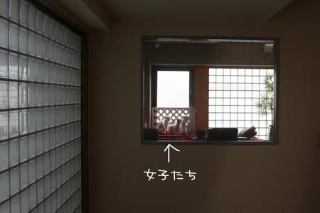 3_14_3993.jpg