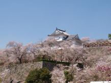 鶴山公園3
