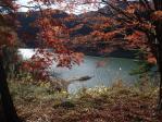 上矢作ダム湖