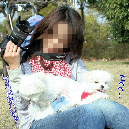 20080312_129.jpg