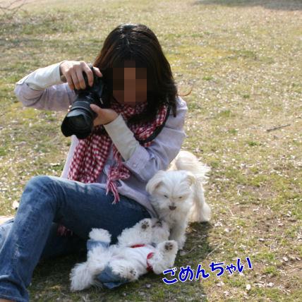 20080312_131.jpg