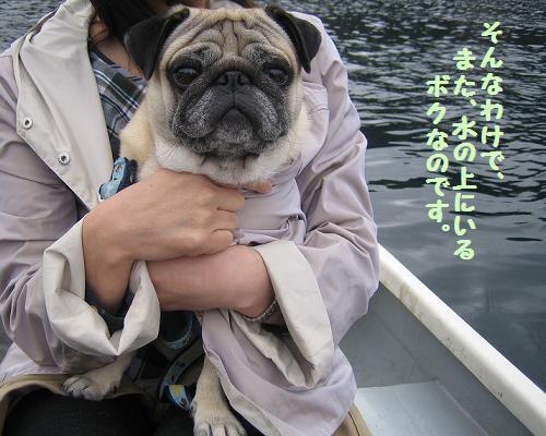 またボートに乗ってます。