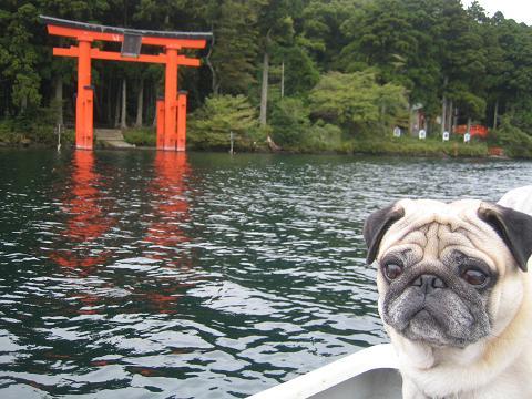 芦ノ湖でボートに乗ったよ!