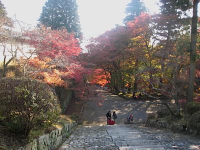 bisyamon_kouyou12.jpg