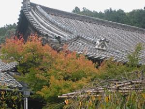 bisyamon_kouyou3.jpg