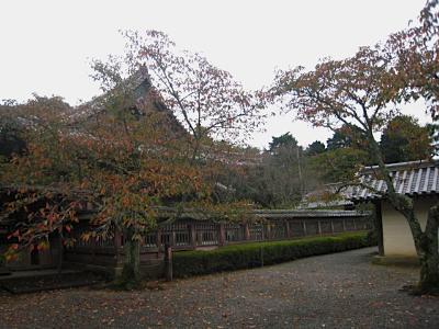 bisyamon_kouyou5.jpg