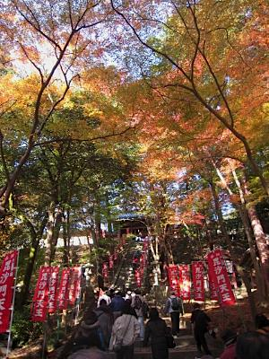 bisyamon_kouyou22.jpg