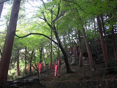 bisyamon_kouyou7.jpg