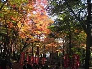 bisyamon_kouyou23.jpg