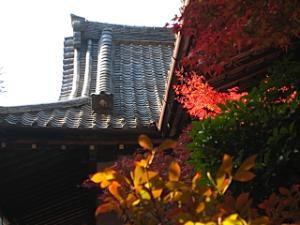 bisyamon_kouyou26.jpg