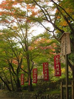 bisyamon_kouyou32.jpg