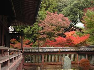 bisyamon_kouyou33.jpg