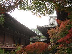 bisyamon_kouyou35.jpg