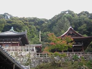 chion-in_kouyou4.jpg