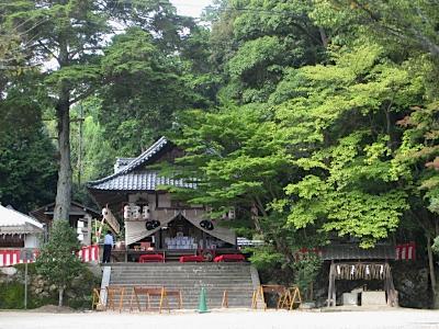 hiraoka_5.jpg