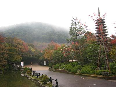 kiomizu_kouyou31.jpg