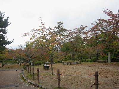 maruyama_3.jpg