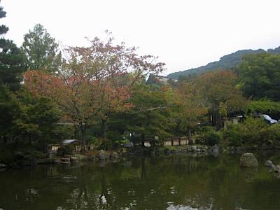 maruyama_4.jpg