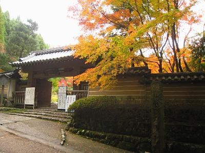 sagano_1117_kouyou4.jpg