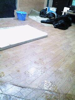 2008年01月07日_PA0_0002