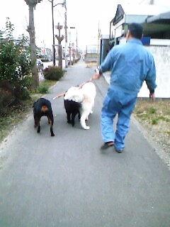 2008年01月30日_PA0_0010