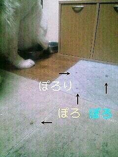 2008年02月25日_PA0_0001