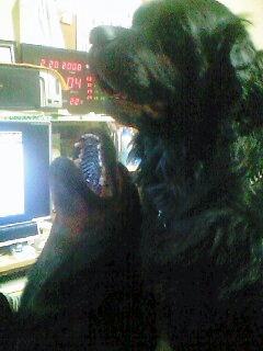 2008年02月28日_PA0_0006