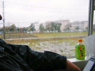 2008年11月28日_GRP_0000