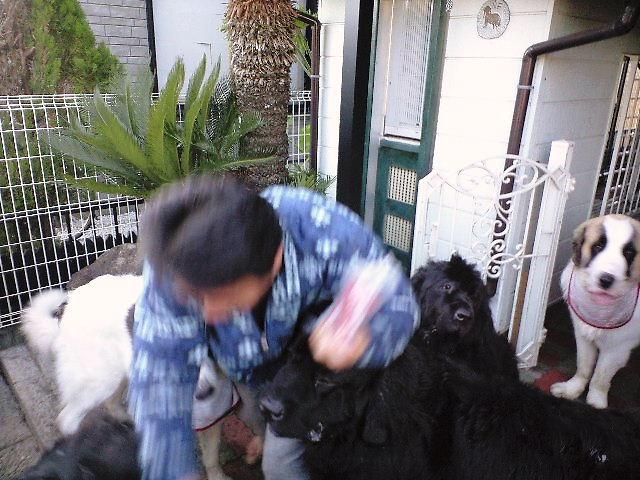 2008年12月07日_PAP_0001
