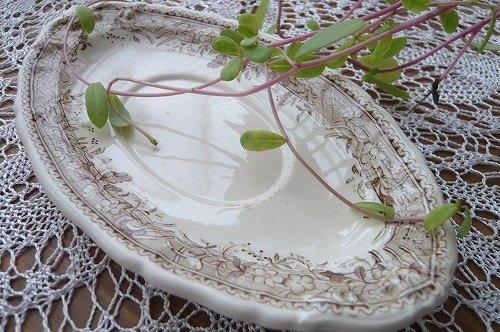 ビレロイ 茶色 楕円小皿